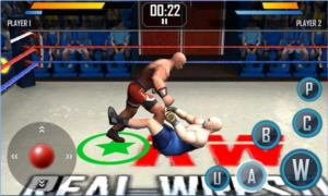 Real Wrestling 3D For PC Screenshot