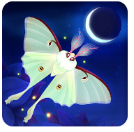 Flutter Starlight for PC Free Download (Windows XP/7/8-Mac)